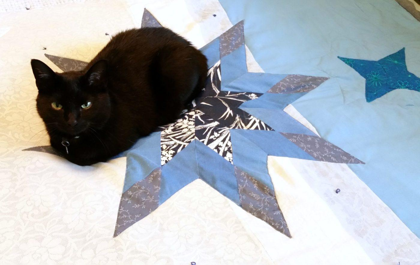 lilo cat on an 8-point star quilt